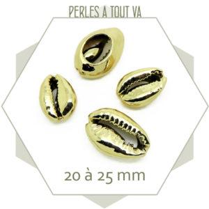 Grossiste matériel coquilages dorés
