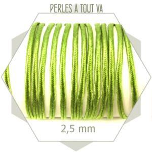 5 m de cordon plat soutache vert tilleul synthétique 2.5 mm